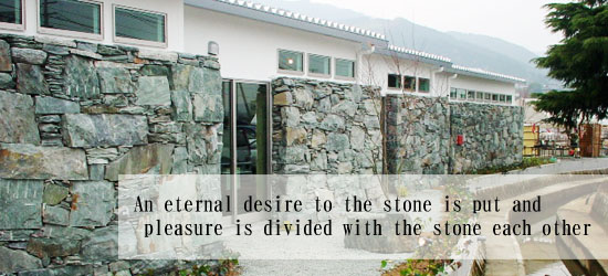 An eternal desire to the stone is put and pleasure is divided with the stone each other